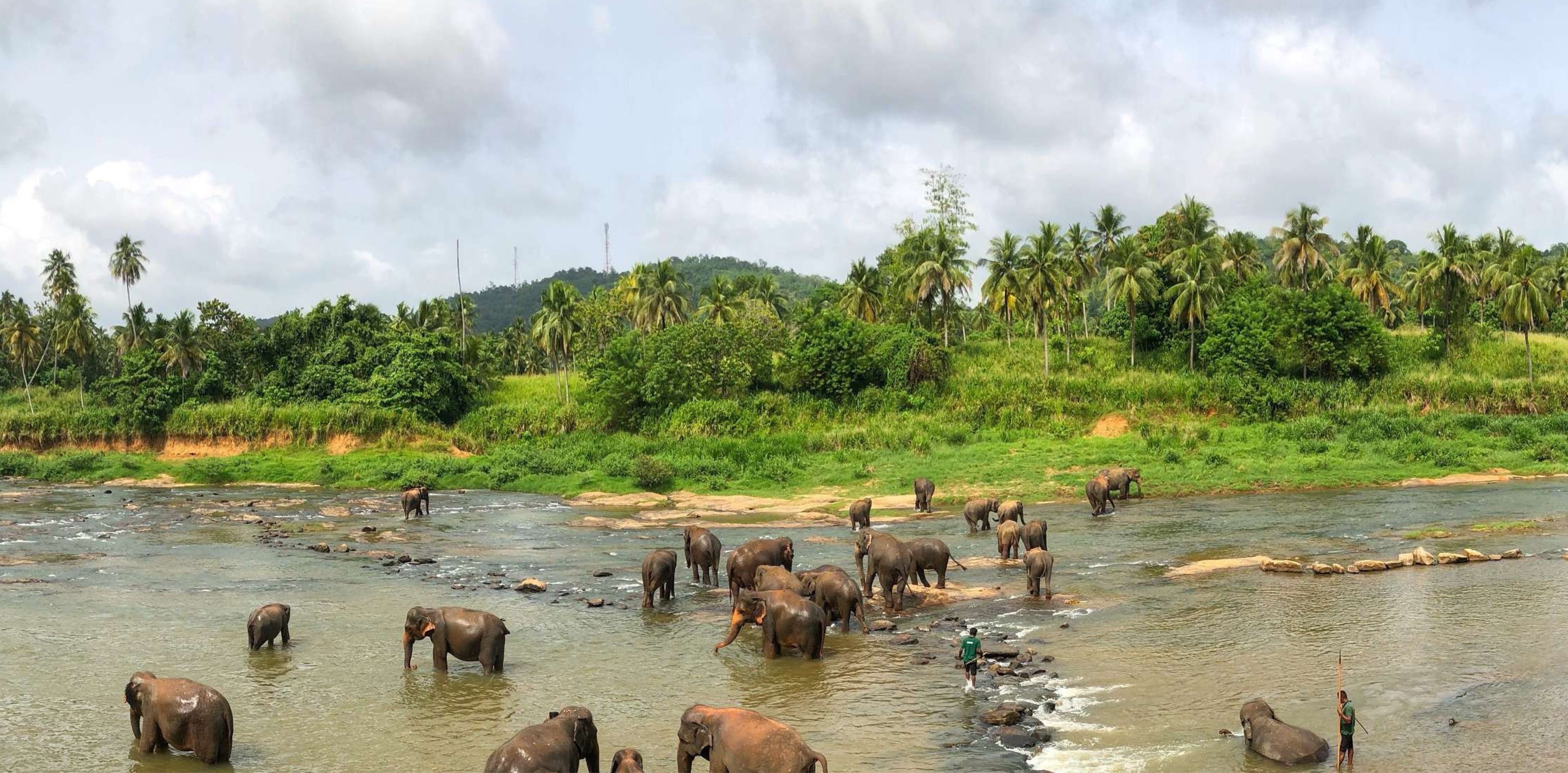 Best of Sri Lanka Highlights Tour Package