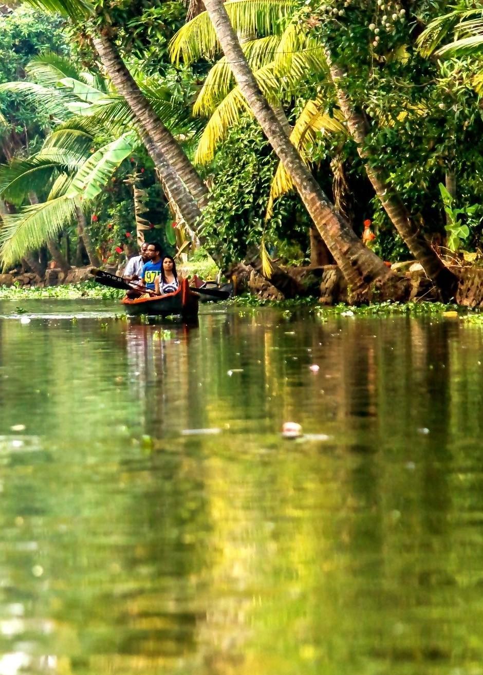 backwaters-alleppey-in-kerala